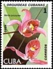 orq3-stamp